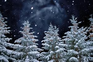 Weihnachtsfeier: Am Freitag schließt unsere Kanzlei um 14:00 Uhr