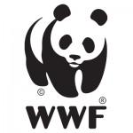 Steffen & Partner – Steuerberater, Wirtschaftsprüfer und Rechtsanwälte – unterstützt den WWF- Naturschutz und Tierschutz